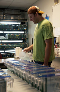 Photo of a grad student working in a lab