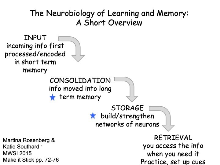 Diagram of Memory and Recall