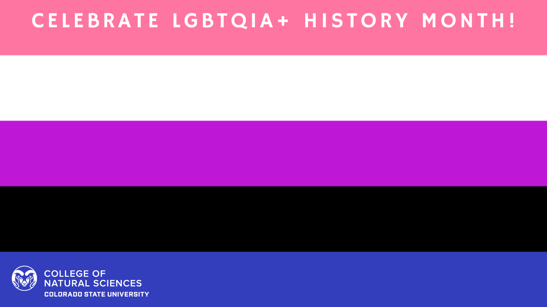 LGBTQIA+ Backgrounds