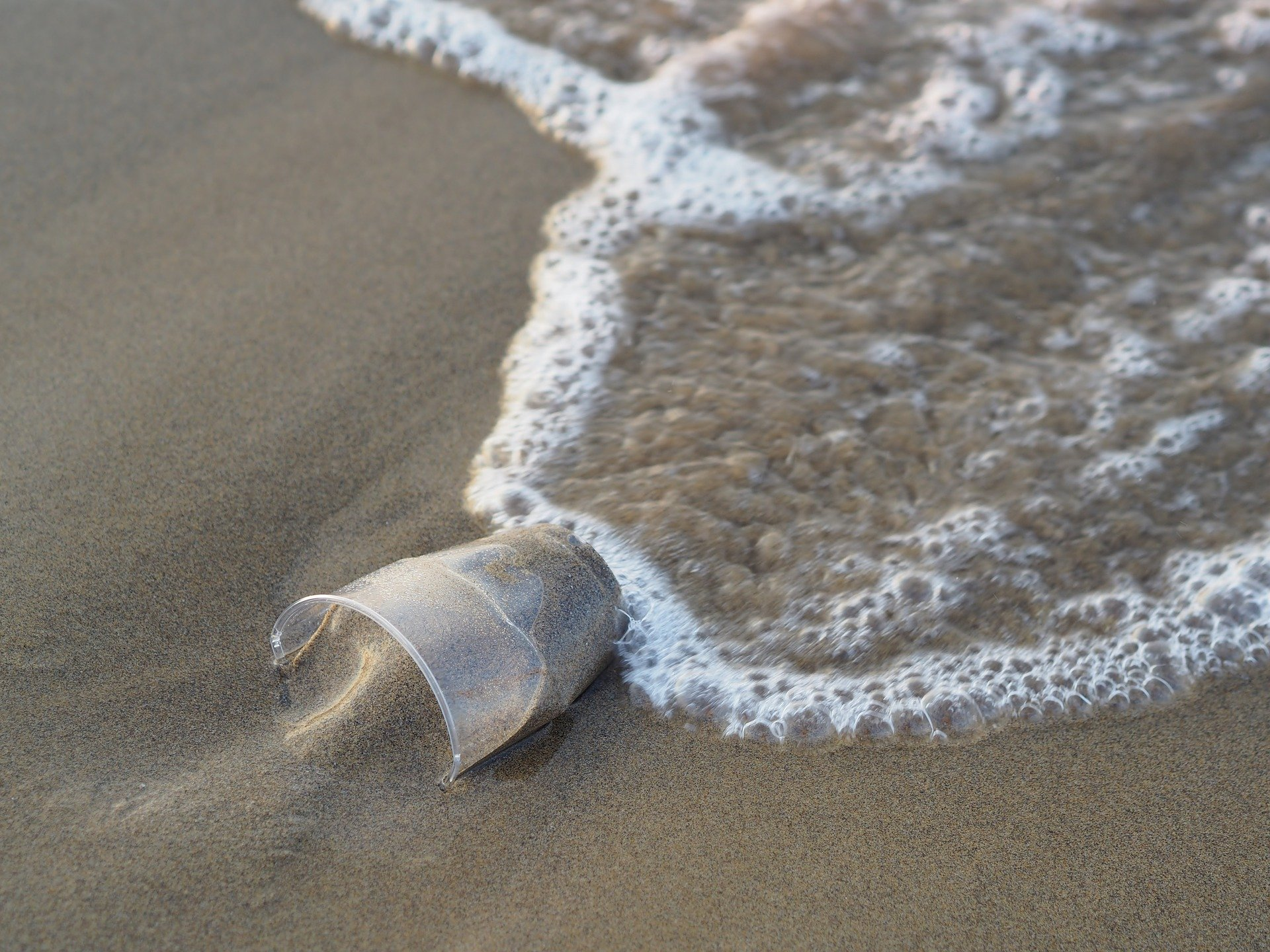 A plastic disposable cup washed up on a beach.